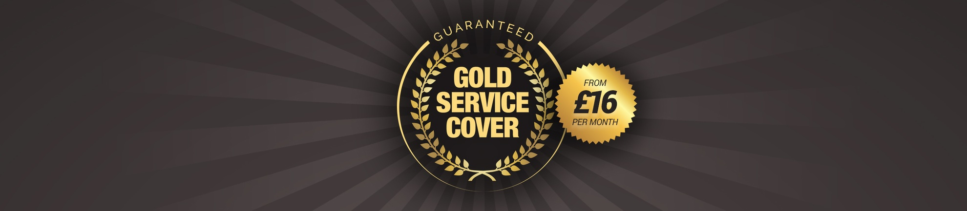Boiler Gold Service Cover